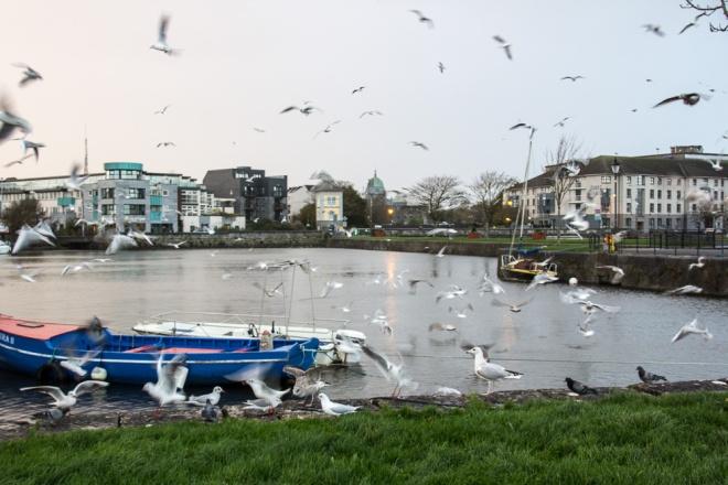 20151111-GalwayHowth-2015040
